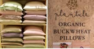 Organic Pillow with Buckwheat from Plantule